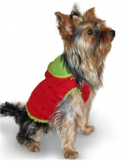Strawberry Dog Costume / Sweater with Hood