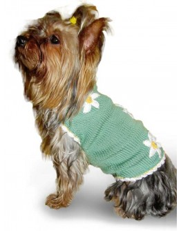 Green Dog Sweater With White Flowers